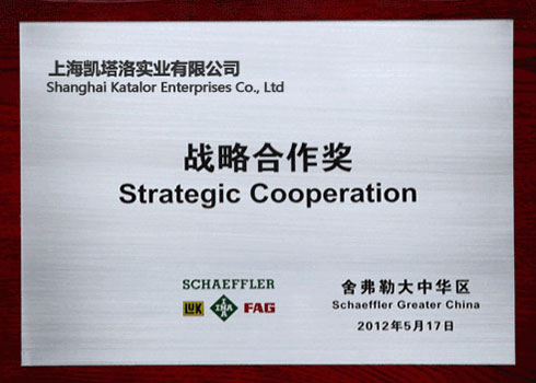 Schaeffler China Strategic Cooperation Award